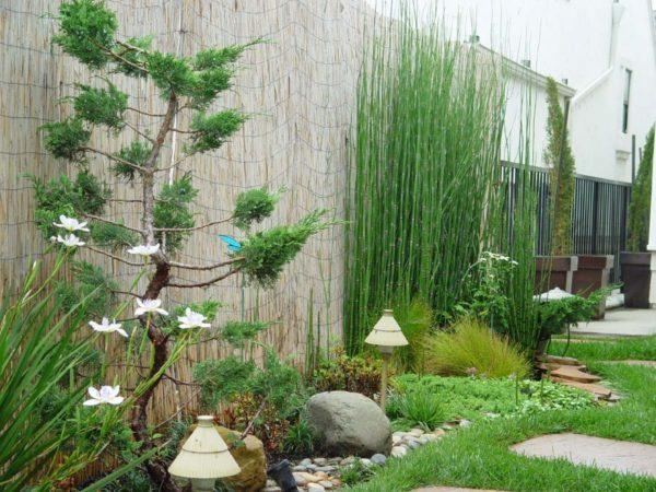 diy garden plans