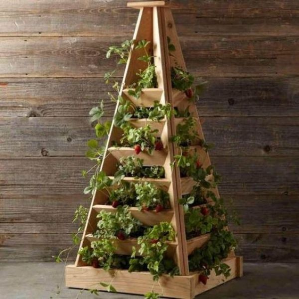 diy indoor gardening