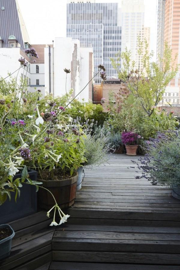 Diy fabulous terrace gardens easy diy and crafts for Diy terrace