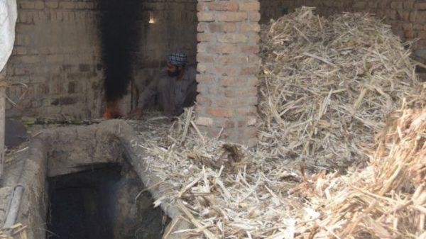 home made sugar from sugar cane