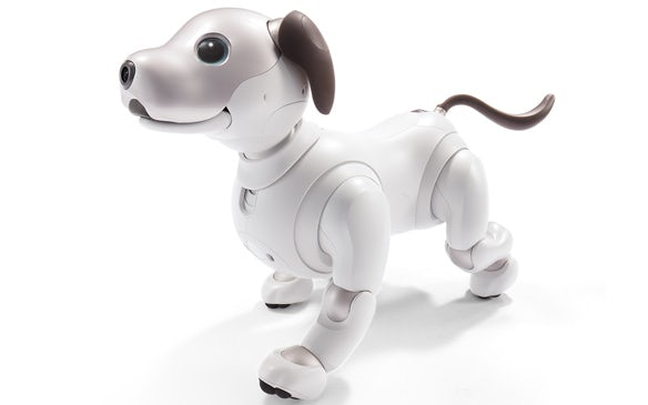 Robotic dog app