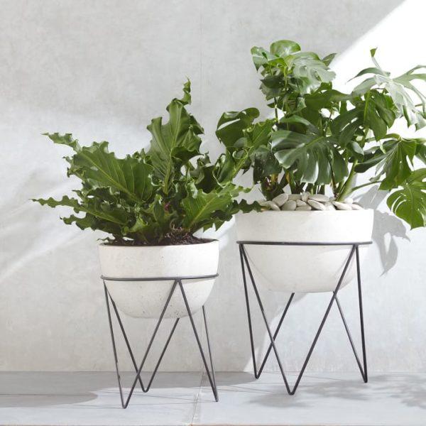indoor planters ideas