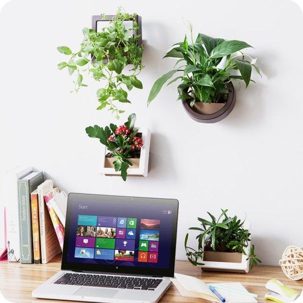 wall mounted planter DIY