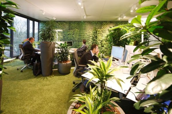 go green office tips