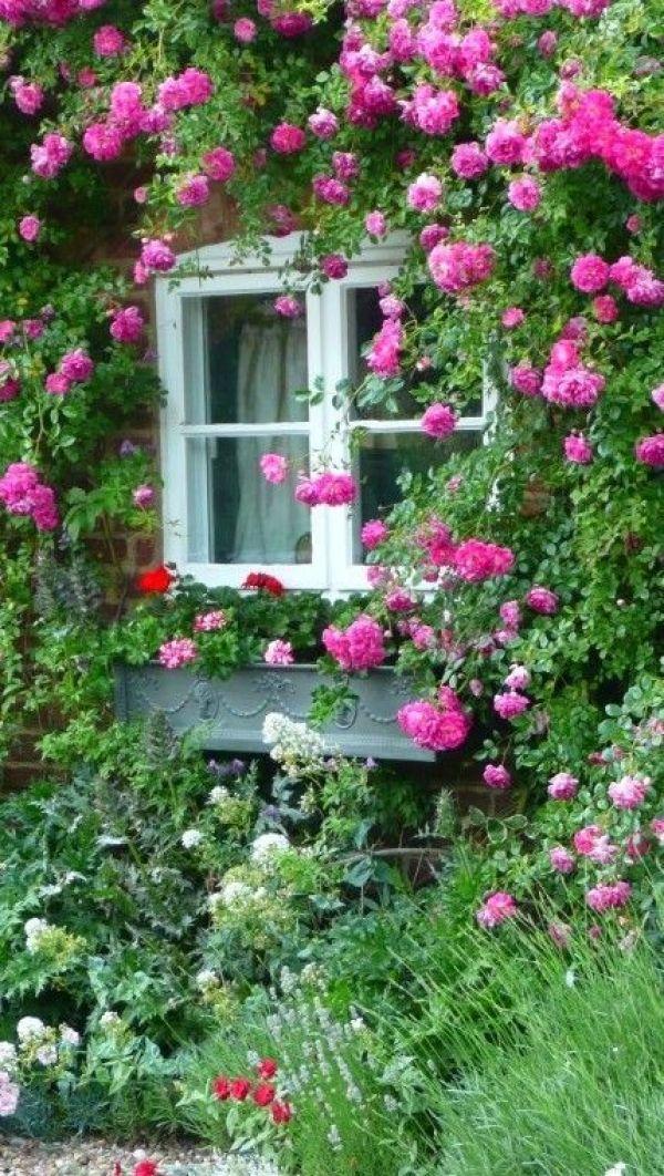 DIY Terrace garden