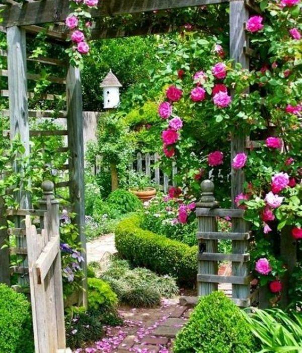 DIY gardening ideas