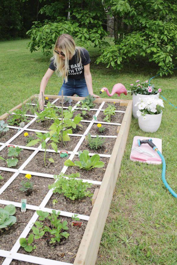 building garden bed ideas