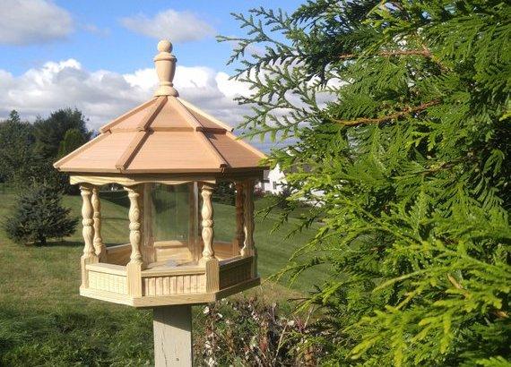 making bird feeder diy plans