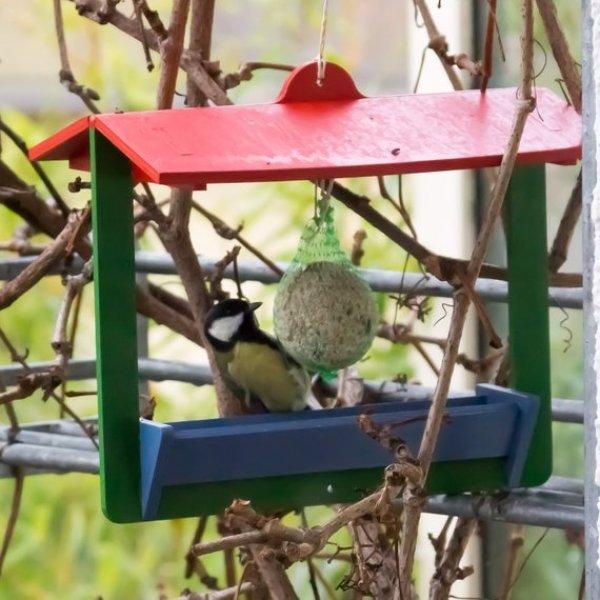 do it yourself bird feeder