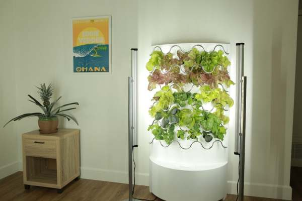 its fully automated indoor hydroponic gardens