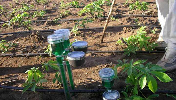 Best-soil-moisture-meter