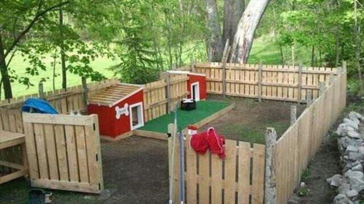 DIY wood pallet dog fence