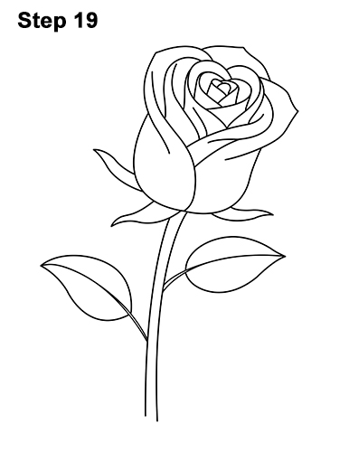 how to draw a rose without erasing