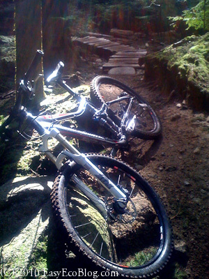 mountain bike, cycling, green forest