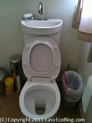 dual flush toilet with sink