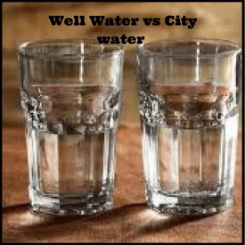 City Water Vs  Private Well Water: Which is Best? [Pros and Cons]