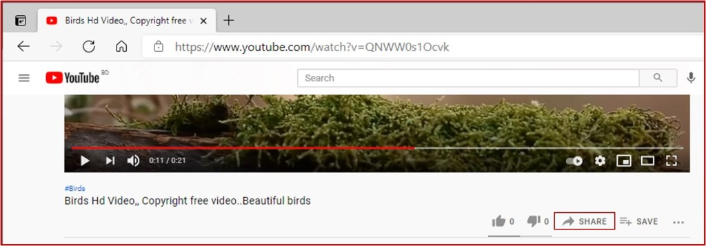 share button in youtube