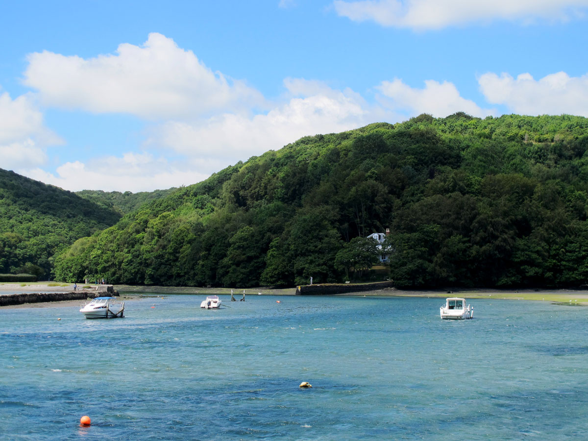 The West Looe River at Looe Station
