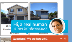 Live Chat Suppoert Maui Real Estate