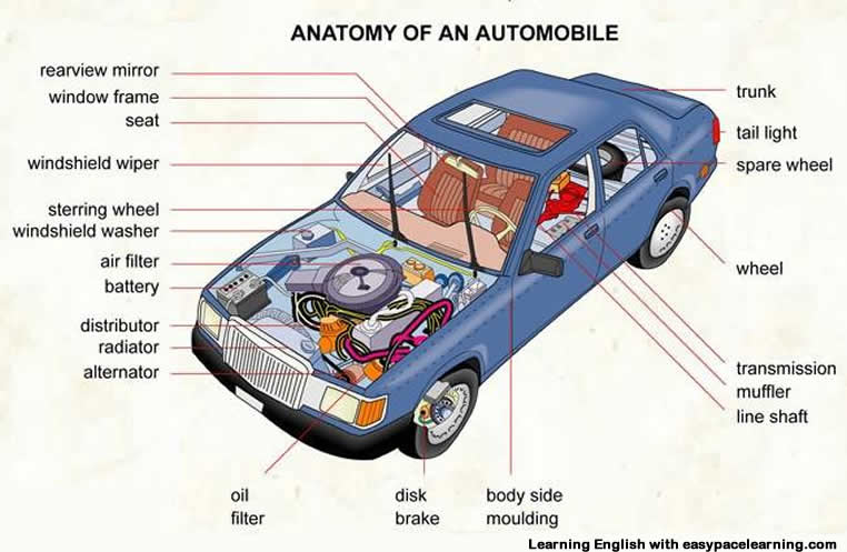 car exterior parts diagram with names sql server entity relationship components glossary great installation of wiring vocabulary pictures learning english rh easypacelearning com