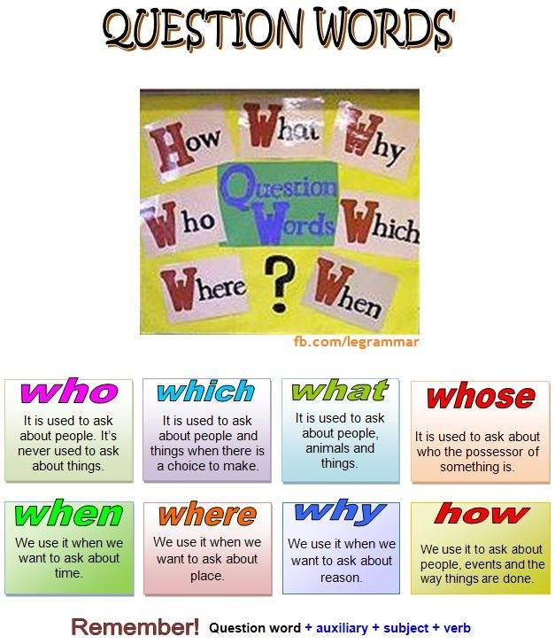 Wh question words English grammar how to use them
