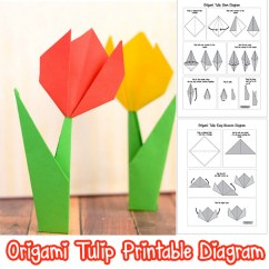 Origami Flower Diagram In English Wye Delta Wiring Motor How To Make Flowers Tulip Tutorial With