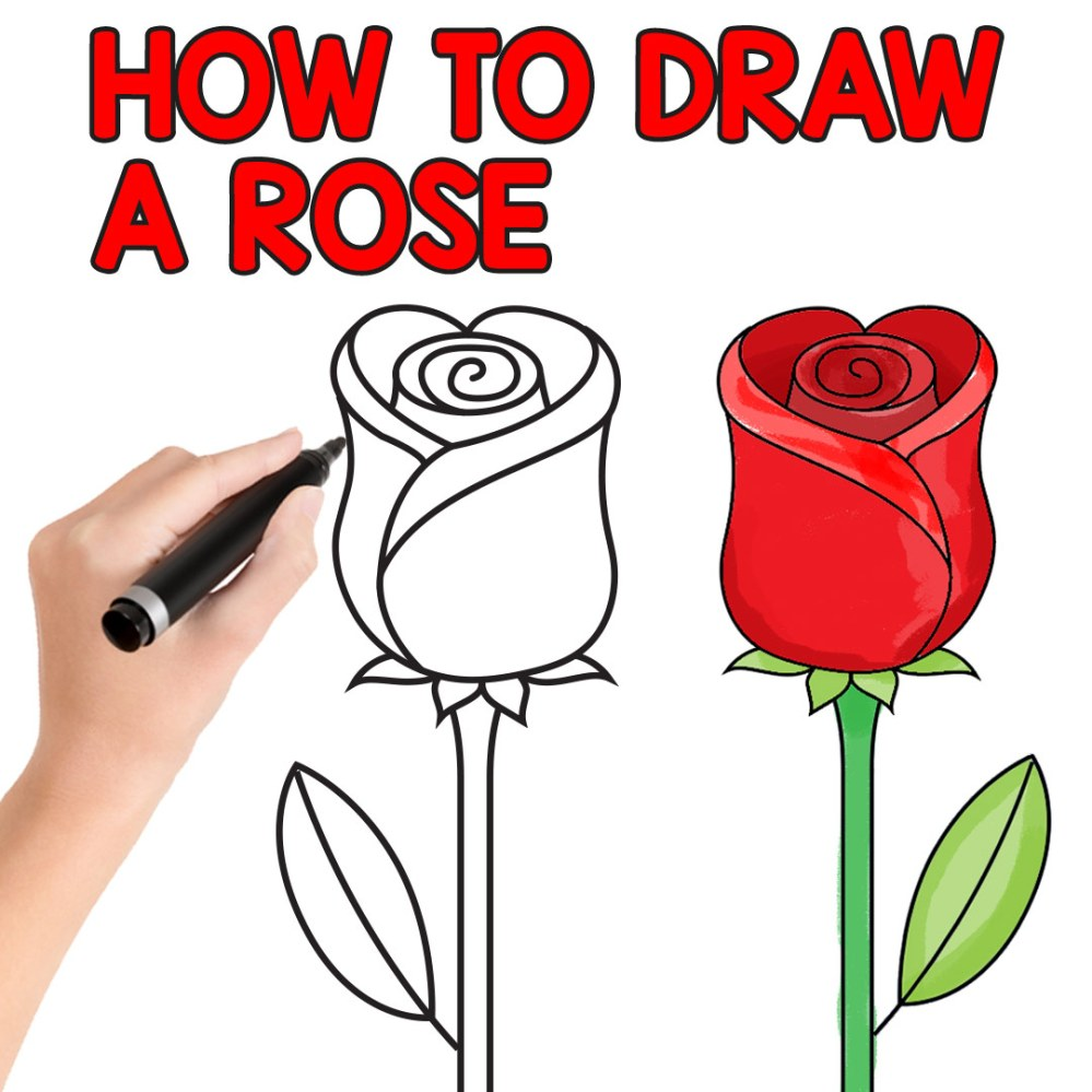 medium resolution of how to draw a rose step by step for kids and beginners