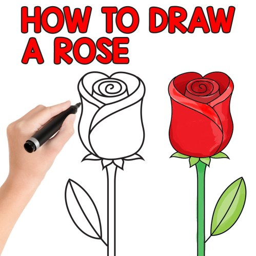 small resolution of how to draw a rose step by step for kids and beginners