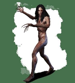Bruxa aus Witcher 3 Wild Hunt Bestiarium