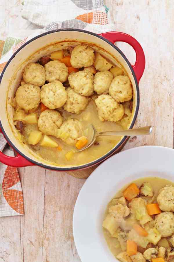Roast Chicken Leftovers Stew and Easy Peasy Dumplings