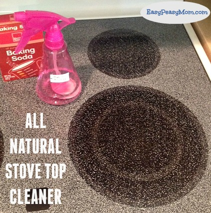 All Natural Stove Top Cleaner 2