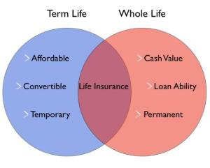 term-vs-whole-life-insurance-cost-difference