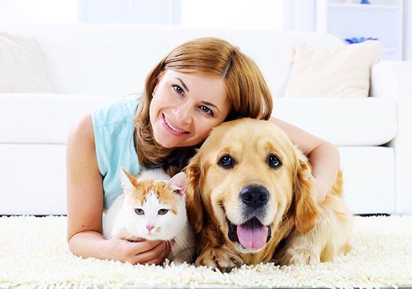 Servizi per Animali
