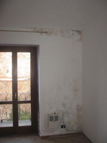 Umidit e muffa conoscerle ed eliminarle definitivamente - Condensa vetri finestra ...