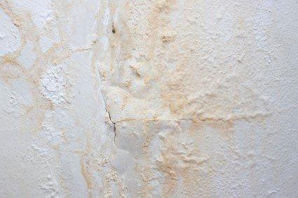 Parete umida finest cascata nei pyrenees francesi - Come eliminare la muffa dalle pareti di casa ...