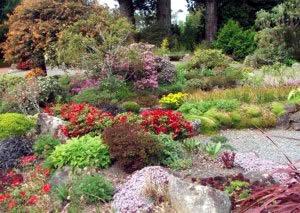 Rock Garden Ideas For Creating A Rock Garden