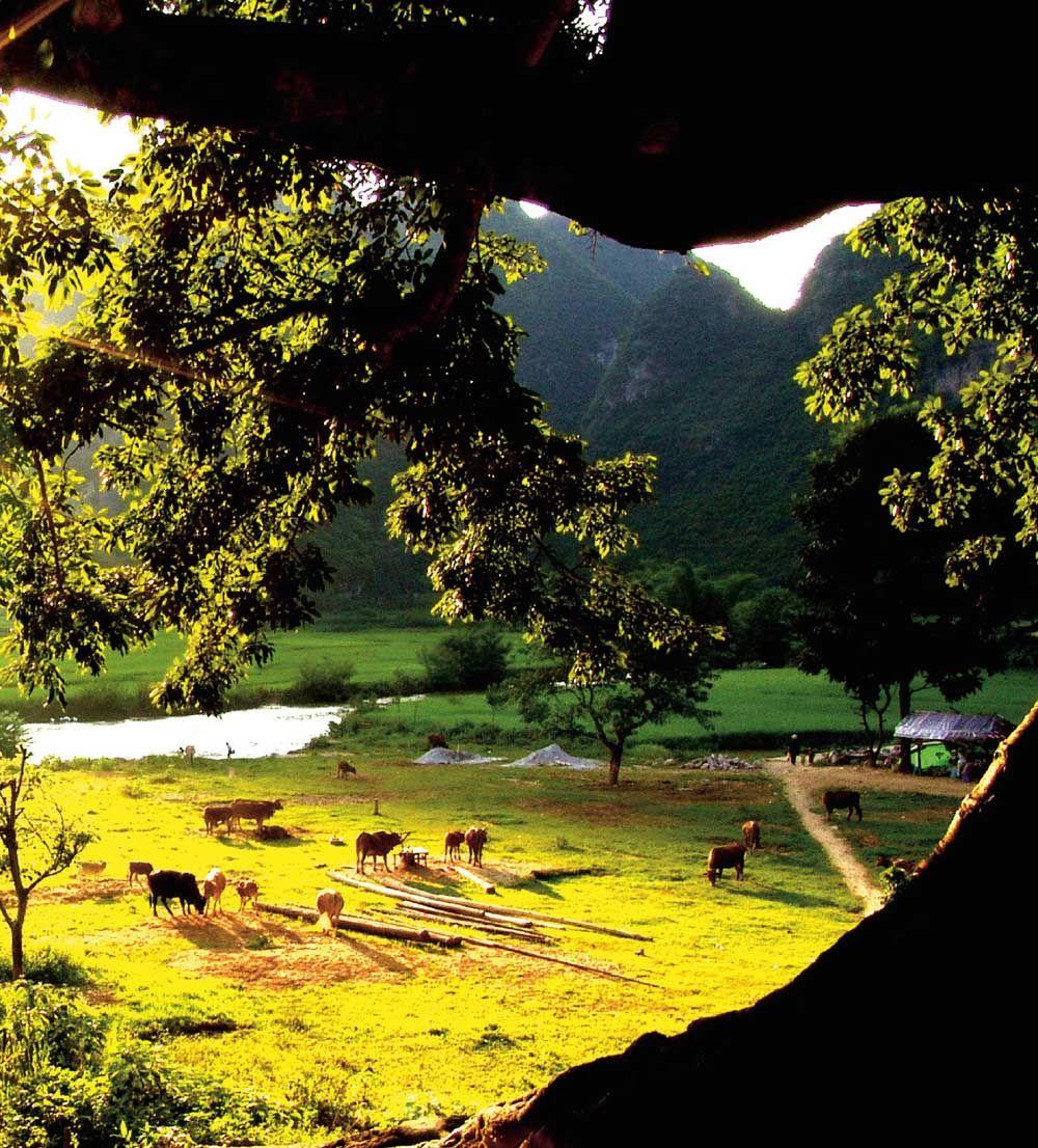Bamei in Yunnan