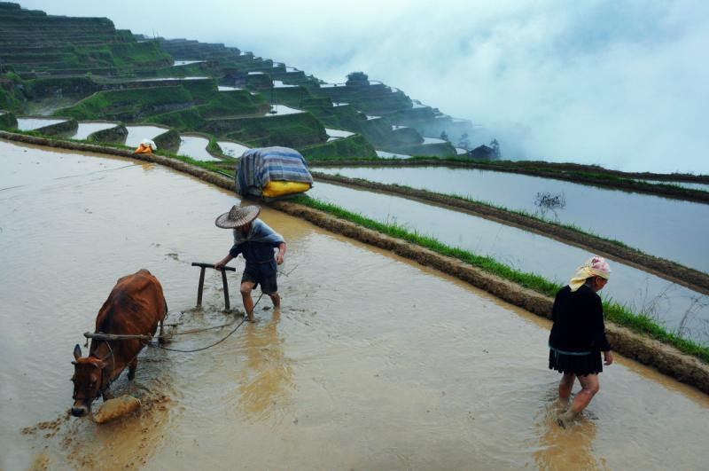 Guizhou tours in April