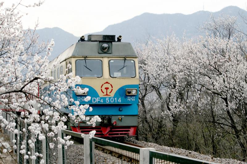 China bullet train travel