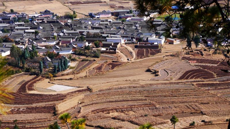 Dali Jianchuan trips
