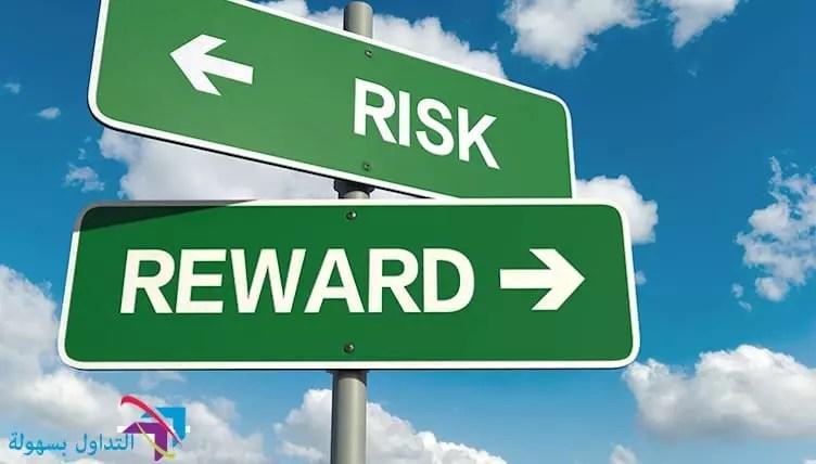 المخاطر و الارباح
