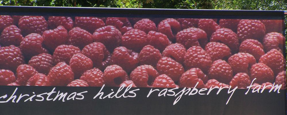 Christmas Hills Rasberry Farm
