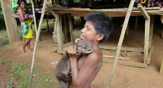Embera-Adventure-View-12_542x292w