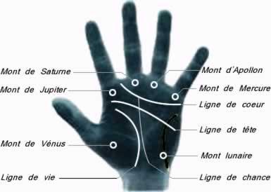 Palmistry in France: 'la lignes de la main' [the lines of the hand]