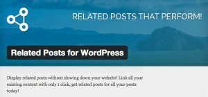 Related Posts for WordPress Premium Plugin made by Barry Kooij