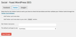 WordPress SEO Plugin Social Twitter