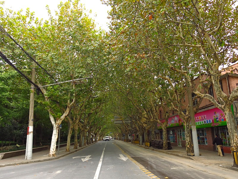 Shaoxing Road