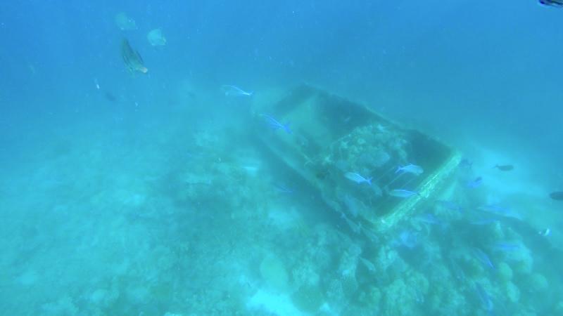 Baros Maldives Shipwreck