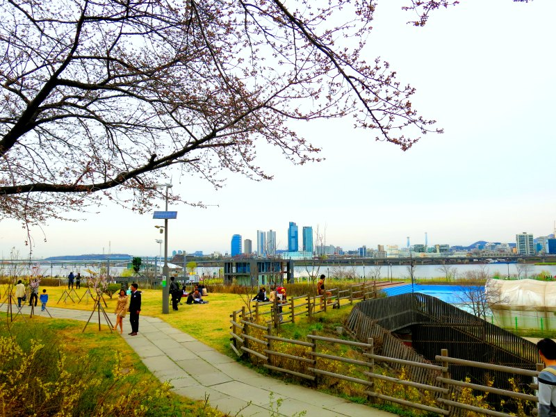 Park overlooking Hangang River and Skyline