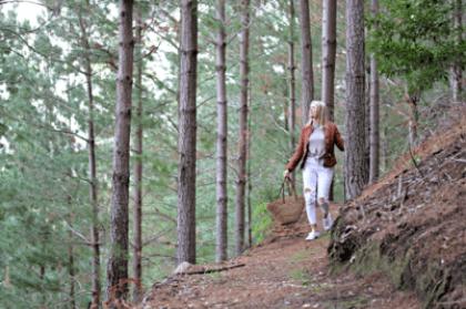 forest girl fungi delheim sonia cabano blog eatdrinkcapetown